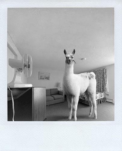 Julien Pacaud :: Polaroids qui n'ont jamais existé #4