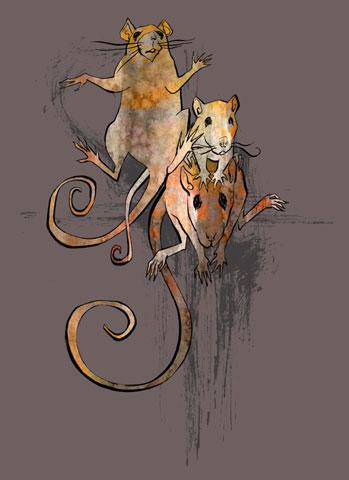 Agata :: Rats #2