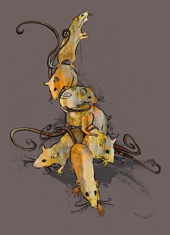 Agata :: Rats #3