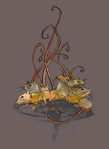 Agata :: Rats #4