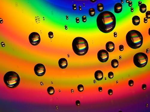 frosk :: I Love Bubblewrap #2