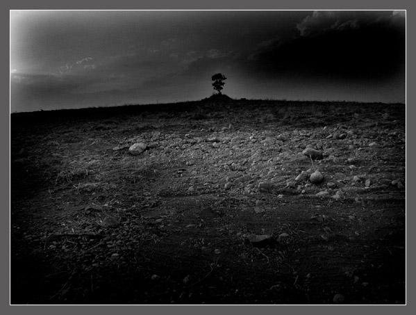 Yvan Galvez :: Landscapes #4