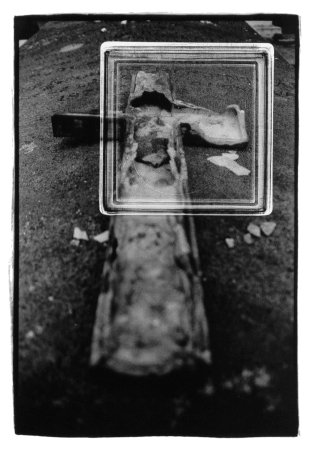 Laurent Orseau :: Cemetery #5