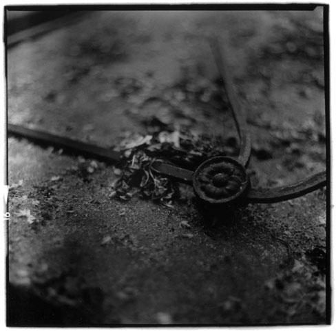 Laurent Orseau :: Cemetexture #4