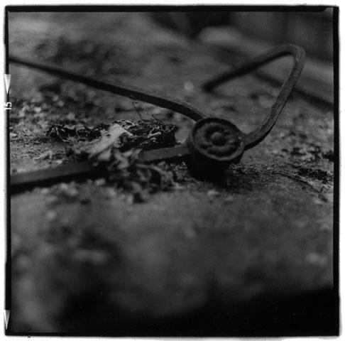 Laurent Orseau :: Cemetexture #6