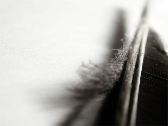 Laurent Orseau :: Raven's feather #4
