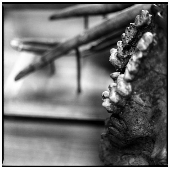 Laurent Orseau :: Skeletons #12