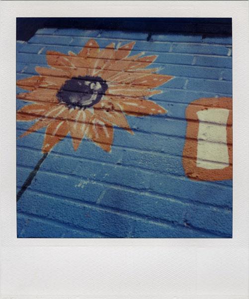 Ann Texter :: I Love Polaroid #11