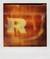 Ann Texter :: I Love Polaroid #9
