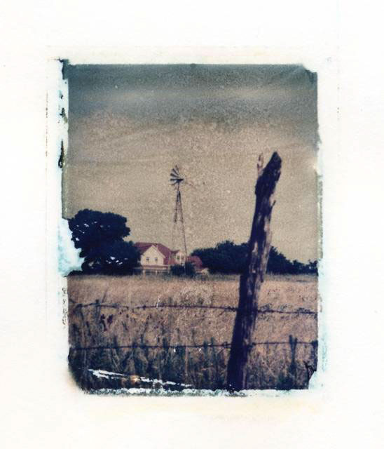 Ann Texter :: Polaroid transfers #12