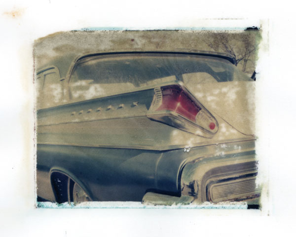 Ann Texter :: Polaroid transfers #16