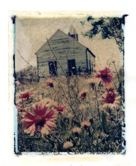 Ann Texter :: Polaroid transfers #5