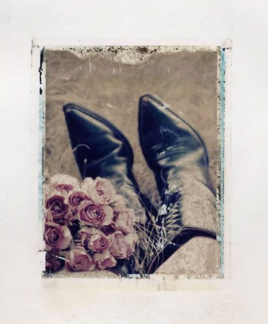Ann Texter :: Polaroid transfers #9