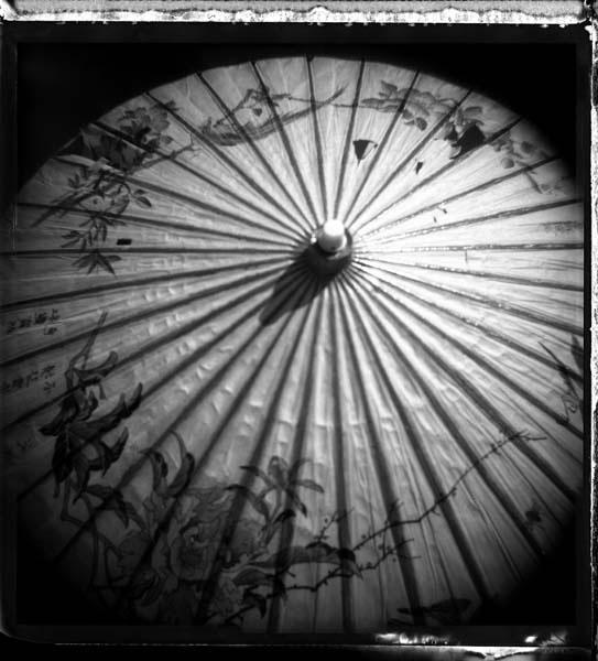 Ann Texter :: Polaroids #2