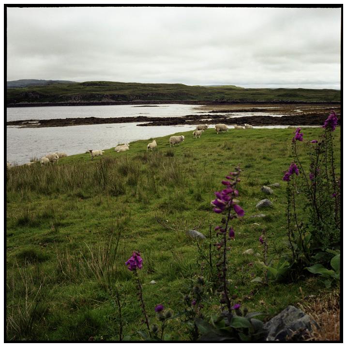 Isle of Skye, Scotland by Laurent Orseau #29