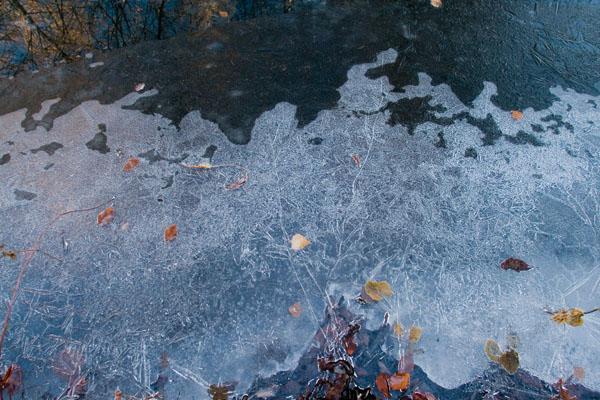 Marise Laget :: à mes pieds, reflets gelés | hinah exhibitions #2
