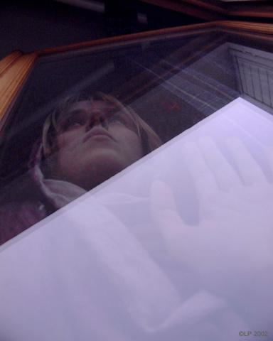 .: Lina Prokofieff :: Glass' Widow