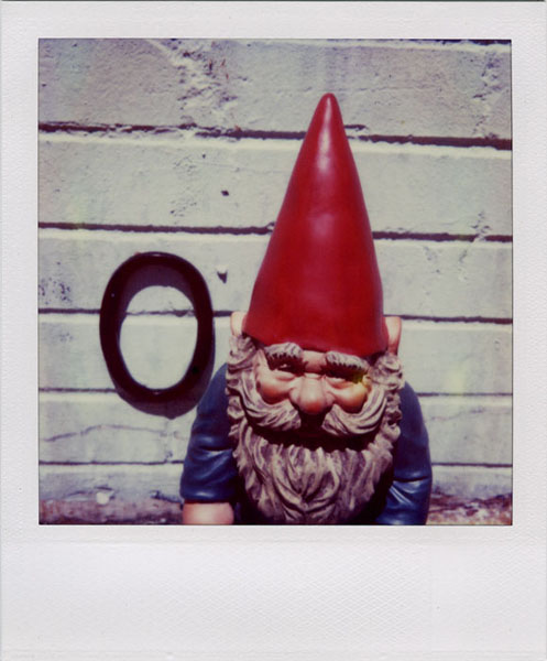 .: Ann Texter :: I Love Polaroid