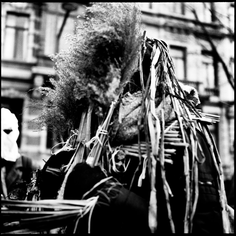 Carnaval sauvage de Bruxelles 2019 (6x6) by Laurent Orseau #1