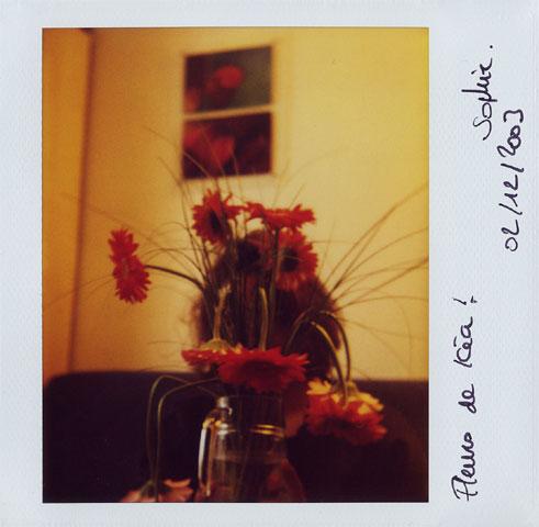 Polaroids by Laurent Orseau #105