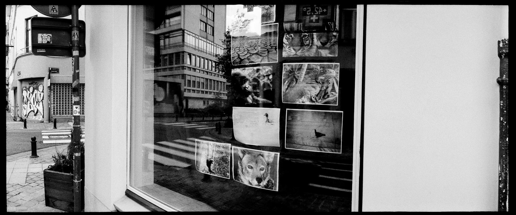 Brussels, Belgium by Laurent Orseau #77