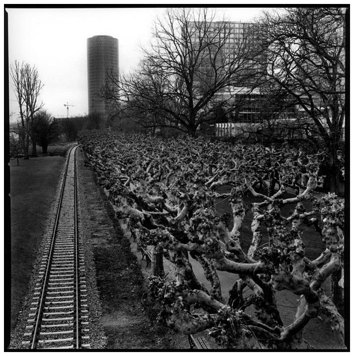 Frankfurt am Main, Germany by Laurent Orseau #10