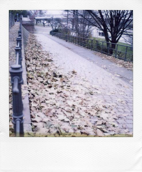 Frankfurt am Main, Germany by Laurent Orseau #76