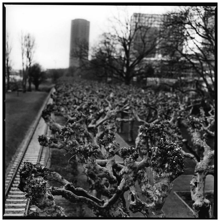 Frankfurt am Main, Germany by Laurent Orseau #9