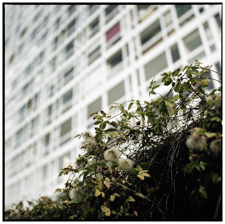 Montparnasse - Jardin Atlantique, Paris, France by Laurent Orseau #5