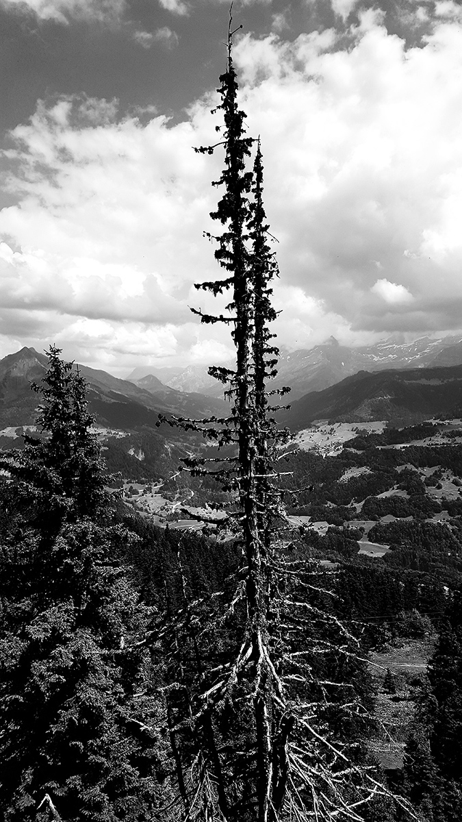 Leysin, Switzerland by Laurent Orseau #2