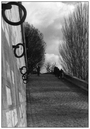 Quais de Seine, Paris, France by Laurent Orseau #1