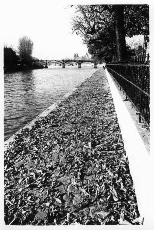 Quais de Seine, Paris, France by Laurent Orseau #13
