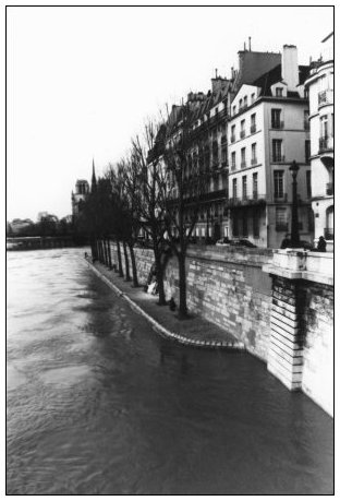 Quais de Seine, Paris, France by Laurent Orseau #16