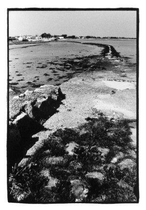 Isle of Ré, France by Laurent Orseau #22