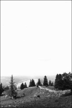 Switzerland by Laurent Orseau #4