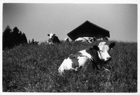 Switzerland by Laurent Orseau #7
