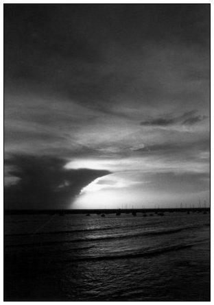 Vendée, France by Laurent Orseau #4