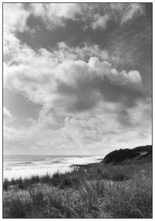 Vendée, France by Laurent Orseau #8