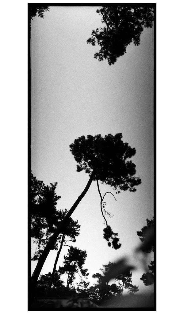 Vendée, France by Laurent Orseau #80