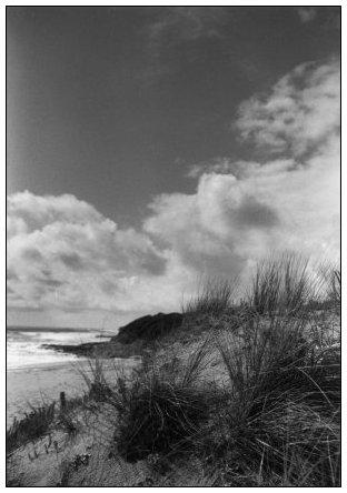 Vendée, France by Laurent Orseau #9