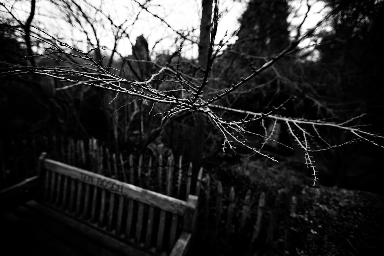 Dark Nature by Laurent Orseau #115