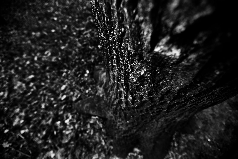 Dark Nature by Laurent Orseau #116