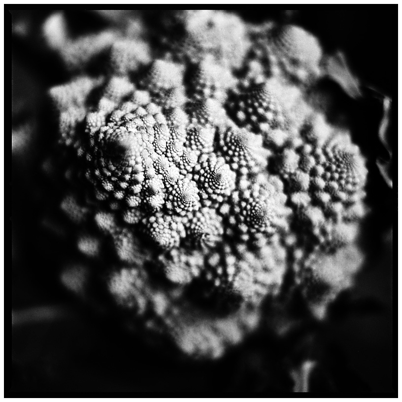 Dark Nature by Laurent Orseau #30