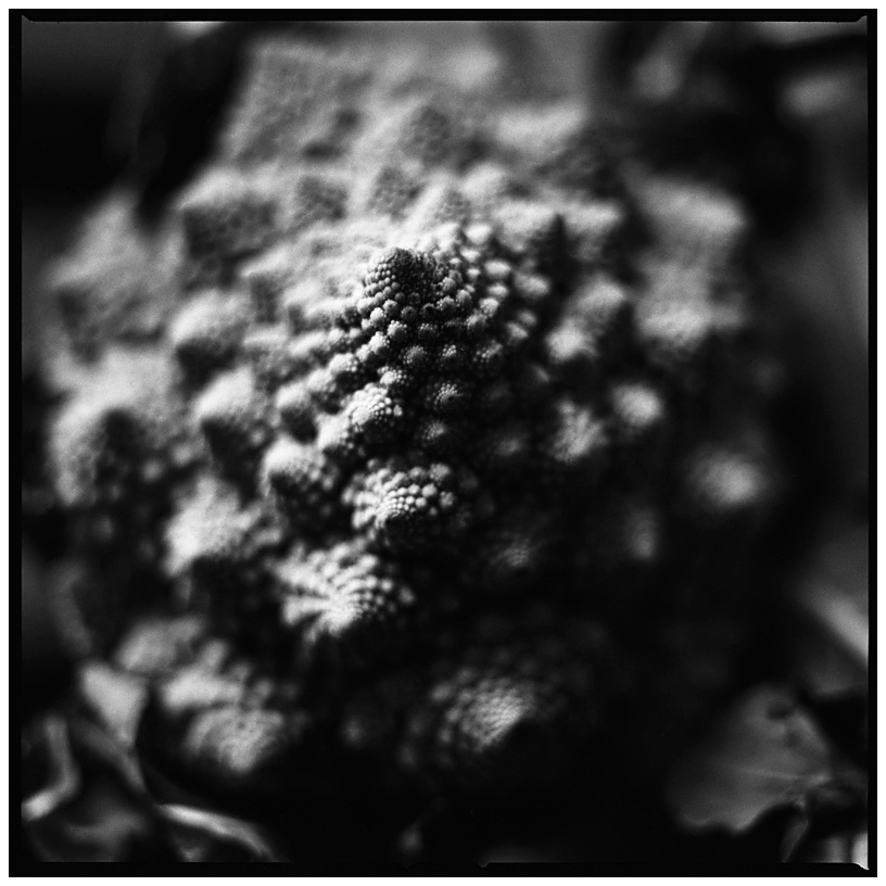 Dark Nature by Laurent Orseau #33