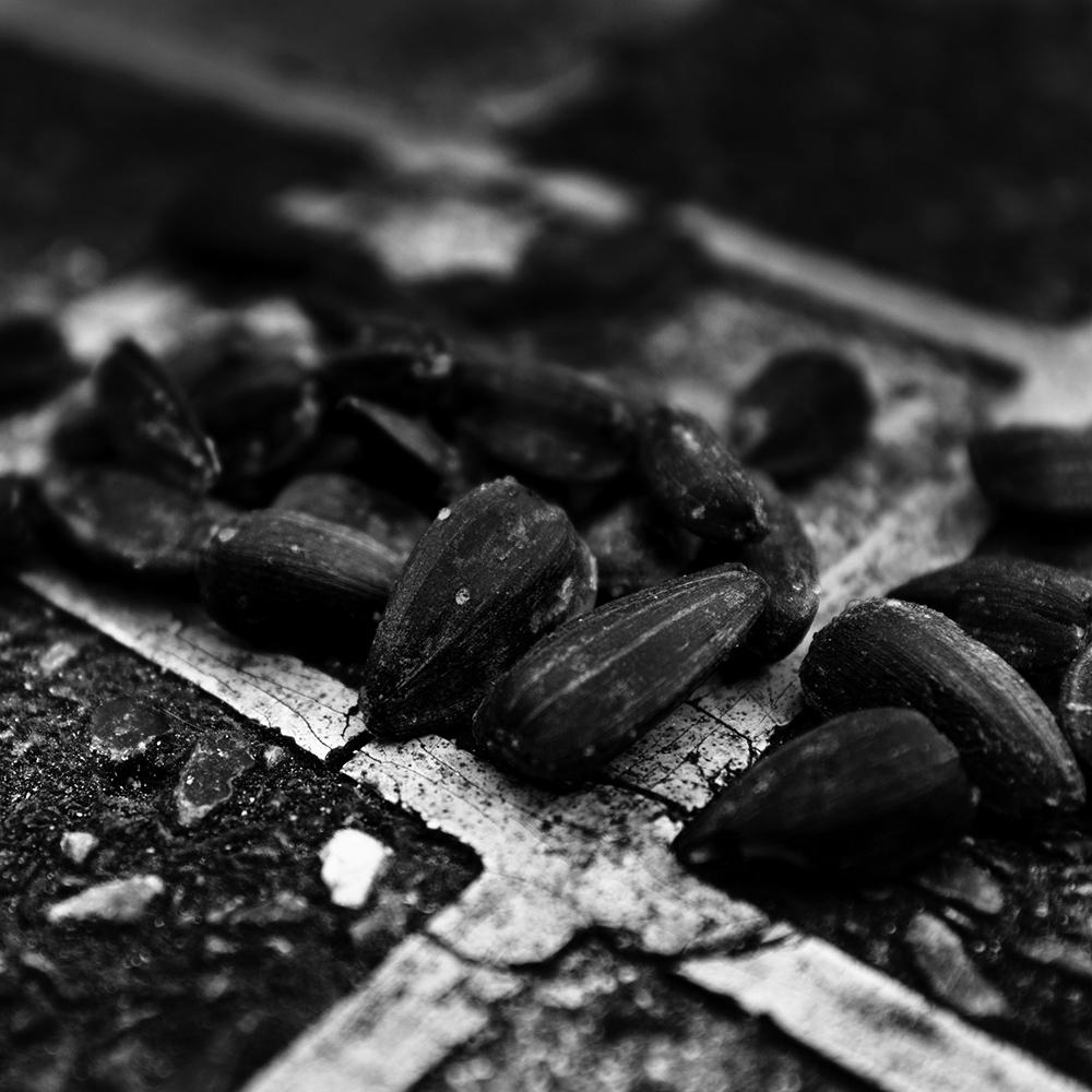 Dark Nature by Laurent Orseau #36