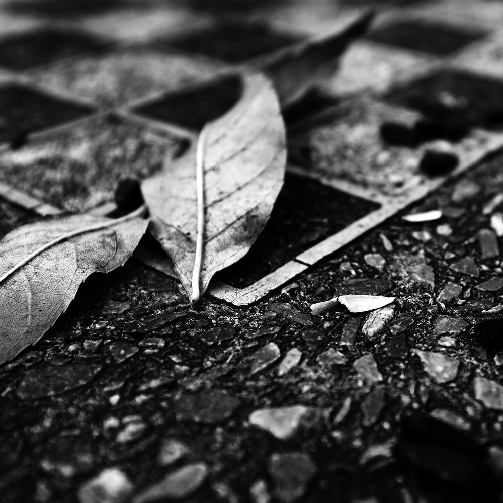 Dark Nature by Laurent Orseau #37