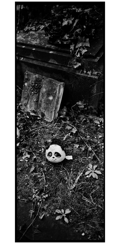 Dieweg Cemetery by Laurent Orseau #34