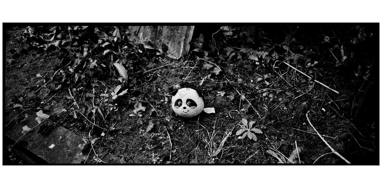 Dieweg Cemetery by Laurent Orseau #35