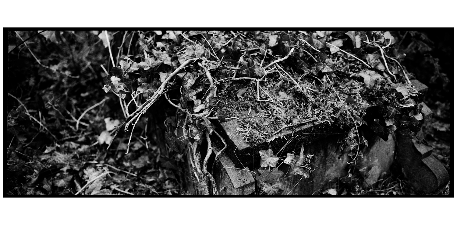 Dieweg Cemetery by Laurent Orseau #36