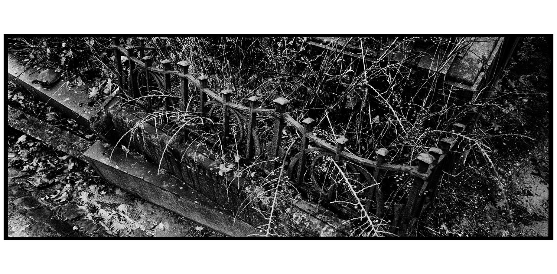 Dieweg Cemetery by Laurent Orseau #37